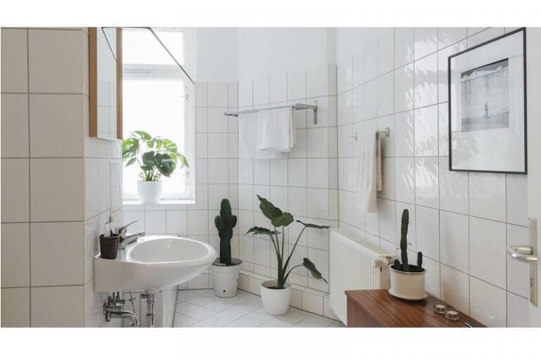 Vệ sinh nhà tắm sạch sẽ sẽ bảo vệ sức khỏe cho cả gia đình