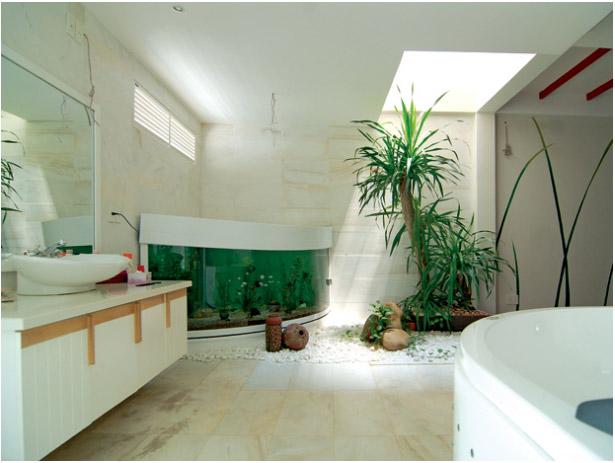 Cây xanh thực sự cần thiết trong nhà vệ sinh