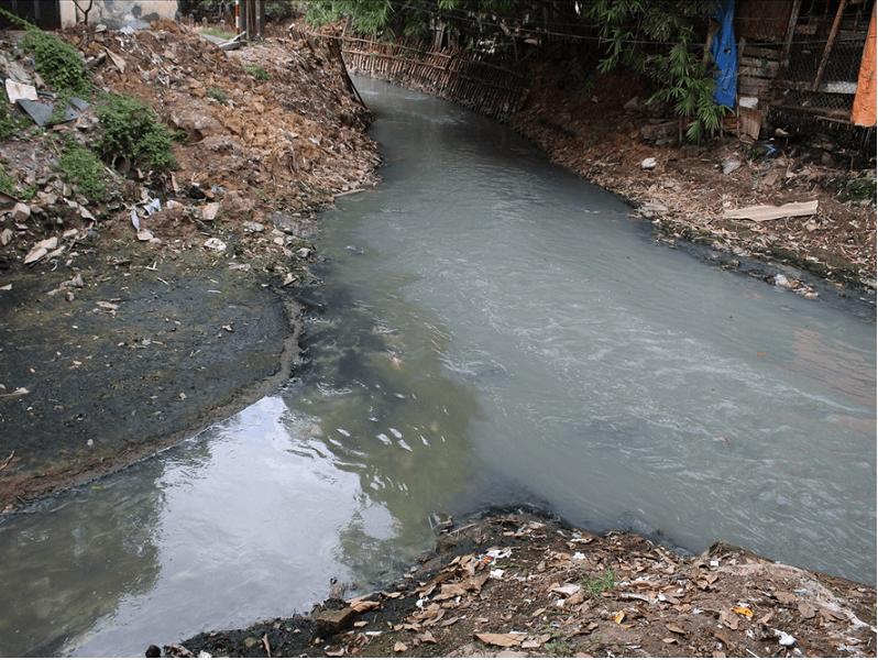 Môi trường bị ô nhiễm vì xử lý chất thải hút hầm cầu không đảm bảo